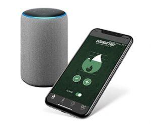 Intellifire App/Voice Control